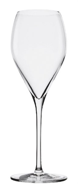 Sparkling&Water Champagnerglas 343ml h:232mm